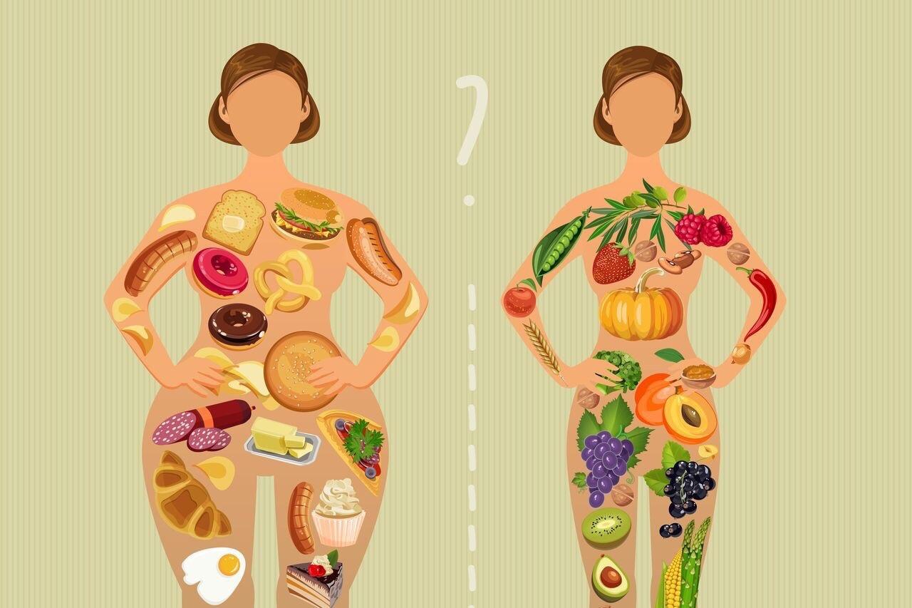 «Метаболизм» простым языком